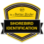 Be a Better Birder: Shorebird Identification Archived Live Series badge