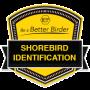 Be a Better Birder: Shorebird Identification Archived Live Series badge