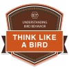 Think Like a Bird: Understanding Bird Behavior badge
