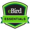 eBird Essentials badge