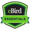 eBird Essentials badge