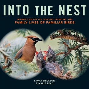 Cover of Into the Nest by Laura Erickson and Marie Read and