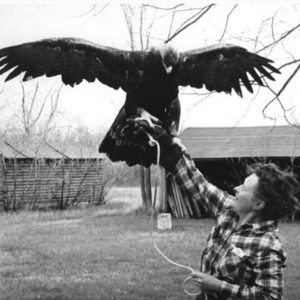 Frances Hamerstrom with Golden Eagle