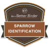 Be a Better Birder: Sparrow Identification badge