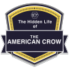 Anything but Common: The Hidden Life of the American Crow badge