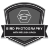 Bird Photography with Melissa Groo badge