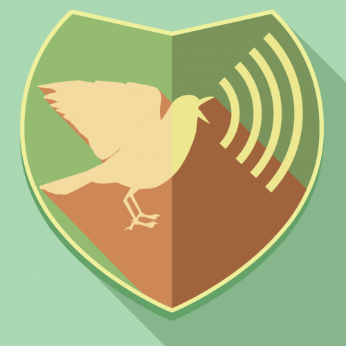 Bird Song Hero: The Song Learning Game for Everyone | Bird